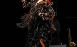 Los de la Noche - Flamenco gypsy Español (3)