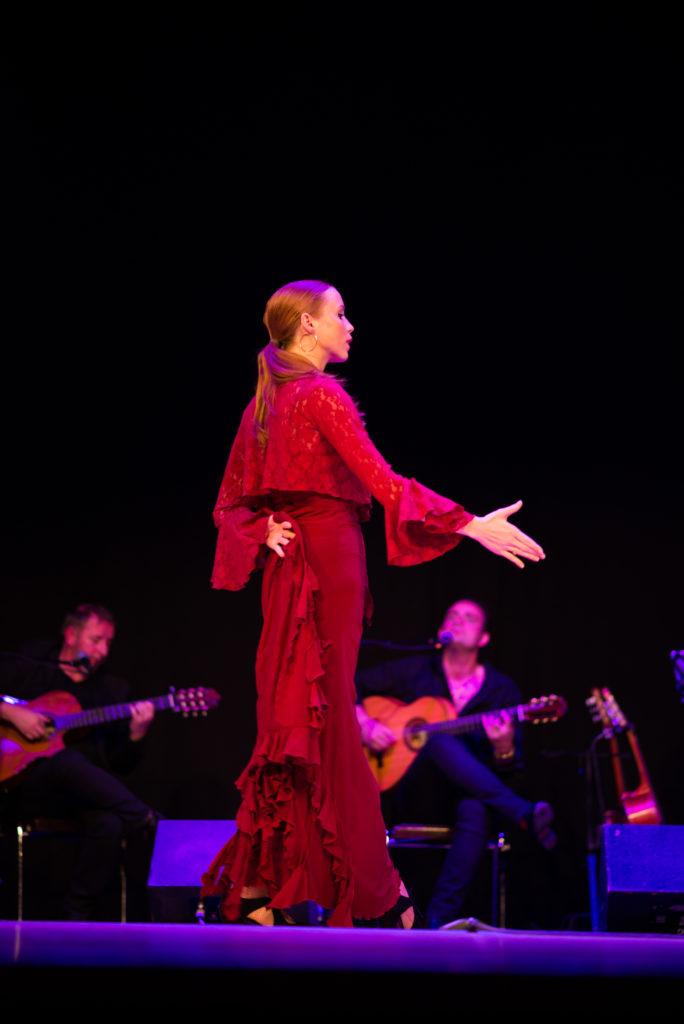 Flamenco nord pas de calais picardie Hauts de FRance lille dunkerque arras maubeuge calais boulogne