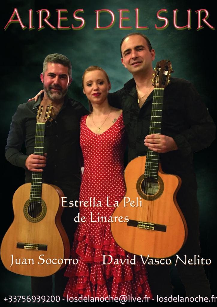 Aires del Sur Flamenco Gyspy Latino France Lille Paris Reims Lyon Strasbourg Metz Bordeaux Marseille